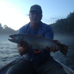 Craig's 24 inch South Holston Brown Trout