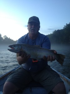 Craig's 24 inch South Holston River Brown Trout