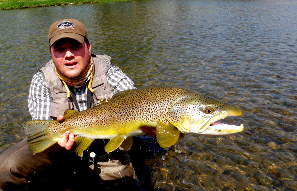 South holston easternflyoutfitters for Tennessee trout fishing