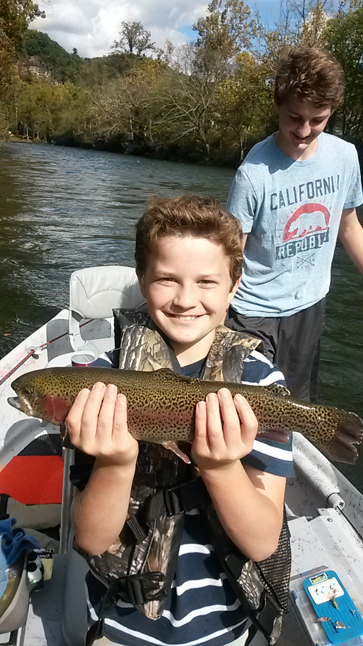 Watauga river rainbow trout