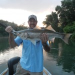 Wood with a South Holston river striper