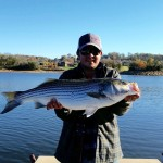boone lake striper