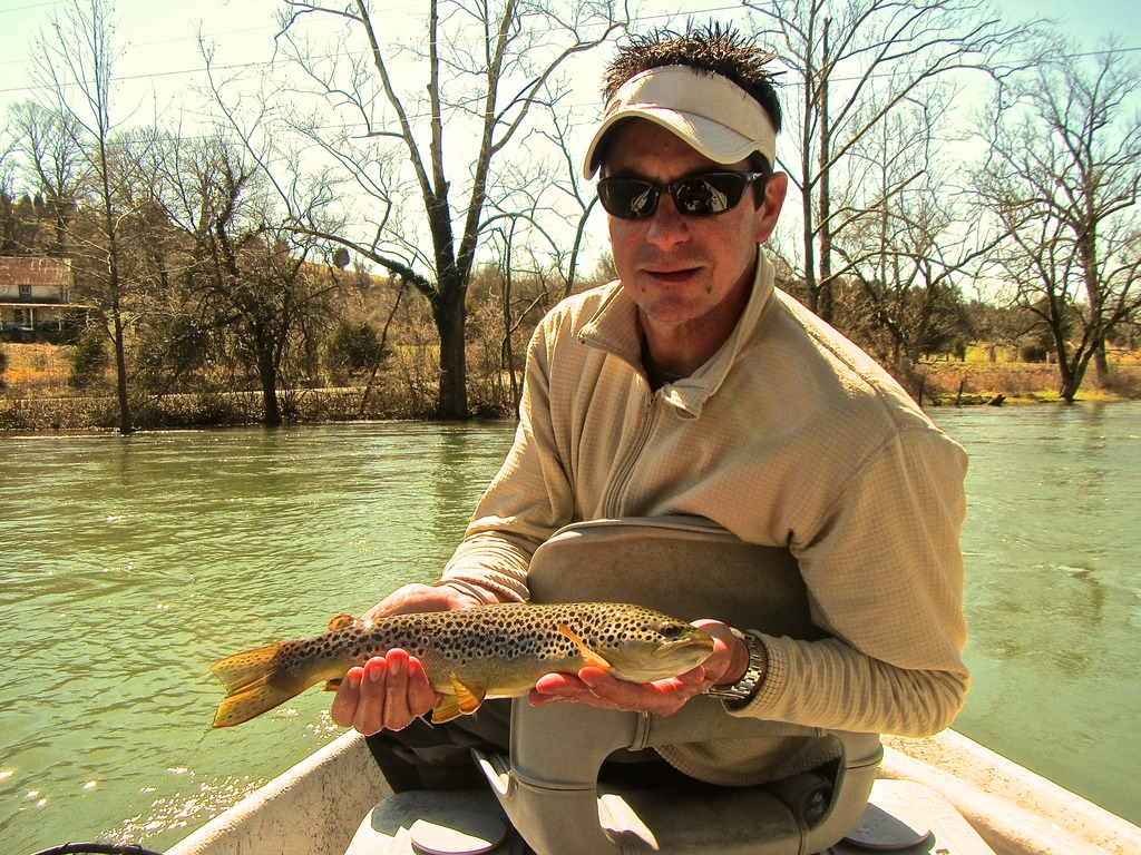 South holston river brown trout easternflyoutfitters for South holston river fishing report