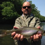 Fat Watauga river rainbow trout 5-15-16
