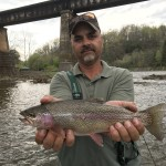 South Holston river rainbow